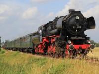 Steam Trail Dieren